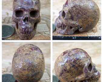 "2.08"" 3.4oz Pietersite Skull Realistic Crystal Healing 95.1g Magick Metaphysical Mystic Reiki Wicca Large 2 inch Yellow SK1433"