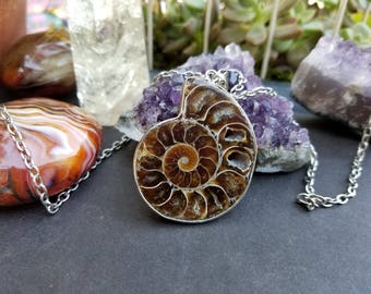Ammonite fossil necklace - Prehistoric fossil - Natural fossil jewelry