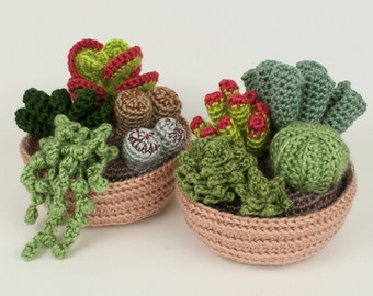 PDF Succulent Collections 1 and 2, eight realistic potted plant CROCHET PATTERNS