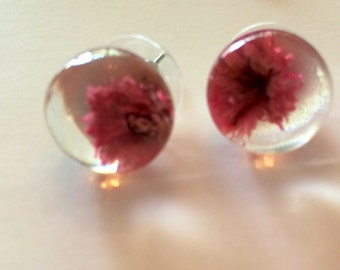 Pink Strawflower Earrings for Love