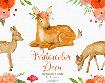 watercolor Baby deer clipart , watercolor clipart, watercolor deer, forest animals, woodland animals, woodland nursery, baby animal clipart
