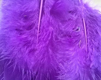 SET of five Eggplant feathers size variety