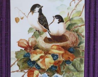 1903 Hand Painted Porcelain Tile Birds 8x10
