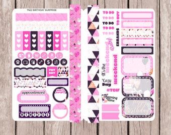 BIRTHDAY SURPRISE Pocket TN / Field Note Traveler's Notebook Sticker Insert | Planner Stickers | TN22