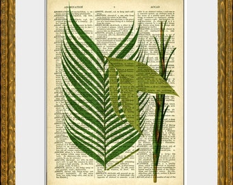PALM TREE FRONDS 2 recycled book page art print - an upcycled antique dictionary page with a retooled antique tree illustration - wall art