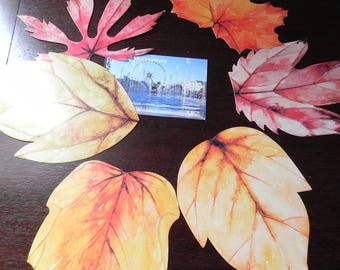 6 postcards depicting leaves of trees/flowers minimum 9 cm x 7 cm