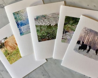 FEARRINGTON VILLAGE, beltie cows and farm, Watercolor Image, Set Five Cards, Blank Greeting Card, Fold Over Card