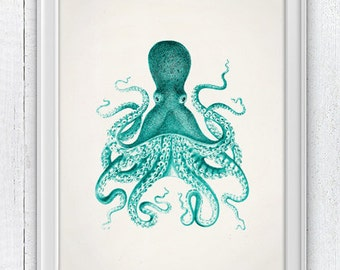 Vintage octopus no.09- sea life print- Wall decor poster , vintage natural history- The great turquise octopus SAS145