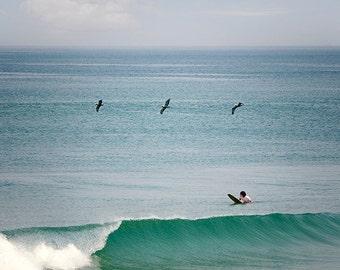 Ocean Photography, Surfing Photo, Surfer Print, Seashore, Seascape, Summer, Flying Pelicans, Beach House Decor, Ocean Waves - Endless Summer