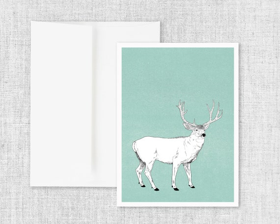 "animal art greeting card, modern greeting card, blank greeting card, greeting card set, deer and antlers, black and white, antler art ""Buck"""