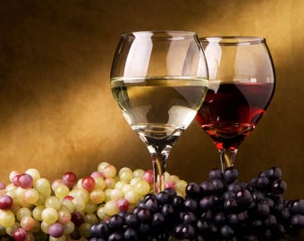 Wine / Grapes 11 x 14 / 11x14 GLOSSY Photo Picture