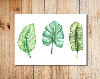 Exotic Leaves Trio