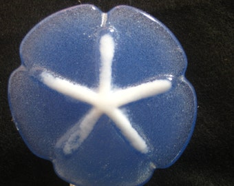 Casted fused Glass Sand-Dollar Nightlight in Blue/White