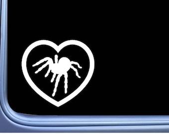 Tarantula Big Heart M234 6 inch Sticker spider decal arachnid