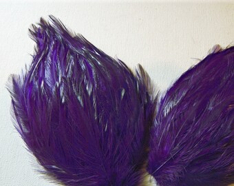 REGAL PURPLE Feather Pads
