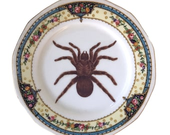 Vintage - Illustrated - Spider Plate - Wall Display - Altered Plate - Antique - Upcycled - Creepy - Goth - Home Decor