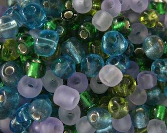 Ocean Reef  10/0 Seed Bead Mix 15 grams