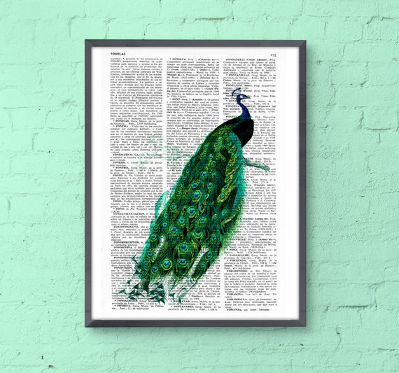 Peacock art dictionary illustration book print peacock wall poster, green wall decor, gift her, peacock feather ANI148b