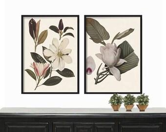 Magnolia Botanical Print - Print - Art Print - Farmhouse Decor - Wall Art Print - Botanical Art - Botanical Art Print - Wall Hanging - Gift
