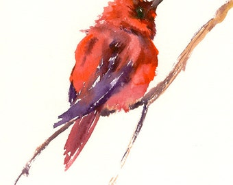 cute red Hummingbird ART, one of a kind original watercolor painting 11 x 9