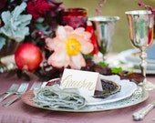 Wedding Name Place Cards, Escort Cards, Shabby Chic, Table Cards, Blush Tented Cards, Hand Painted Calligraphy