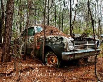1967 Ford Falcon Futura Sports Coupe in the woods Photograph