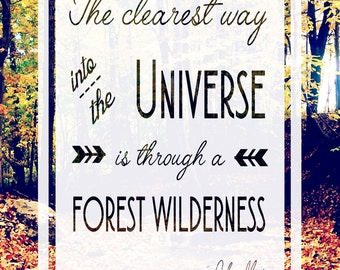 Digital Download - 8x10 - John Muir Print
