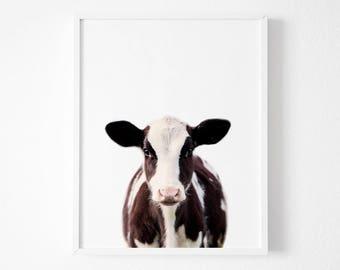 Calf Print,  Farm Animal Wall Art,Baby Cow, Nursery Decor, Calf Printable Poster ,Babies Room,Digital Download, Farmhouse Decor, Color Photo