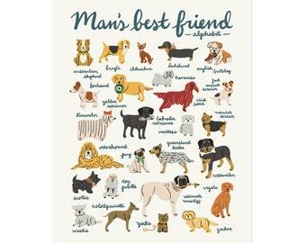 Mans Best Friend Alphabet Art Print 11x14