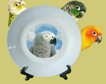 "Congo African Grey Parrot Blue Sky Clouds White Decorative Ceramic 8"" Plate and Display Stand"