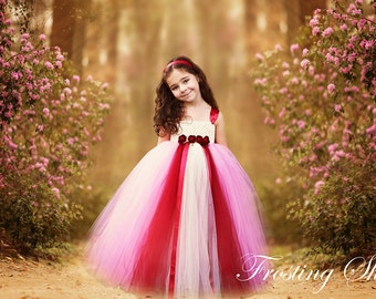 READY TO SHIP Dusty Pink and Red Rose Tutu Dress