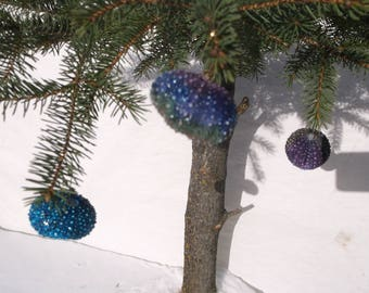 Sea Urchin Christmas Decorations - 3 REAL Sea Urchin Christmas tree decorations - Set of 3 Real Sea Urchin Shells - FREE SHIPPING  -  C-12