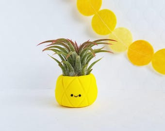 Pineapple Air Planter, Gift for Her, Mom Gift, Mothers Day Gift, Tropical Decor, Mini Planter, Air Plant Holder, Cute Planter