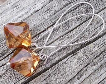 Orange Earrings Fall Earrings Autumn Earrings Clear Orange Earrings Halloween Earrings Long Orange Earrings Light Orange Earrings Large