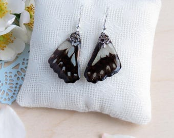 Real butterfly wings in epoxy resin earrings, nature style, ready to ship