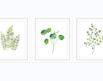 Botanical Prints, Botanical Art, Botanical Print Set, Botanical Set 3, Botanical Art Prints, Fern Prints, Set of 3 Prints, Fern Art, Leaf
