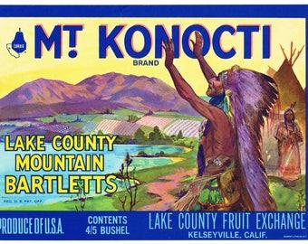 Original vintage pear crate label 1970s Mt. Konocti Kelseyville American Indian California