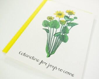 Celandine for Joys To Come
