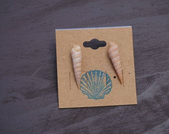 Auger shell earrings