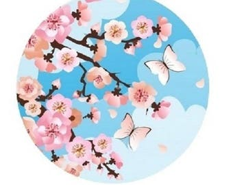 20mm, pink cherry blossoms, blue background