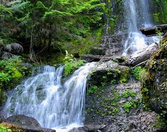 8x10- Cascading Waterfall- Cascade- Pacific Northwest- Washington- Evergreen State- Outside- Forest- River- Nature- Digital File Download