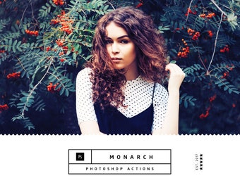 Monarch Photoshop Actions