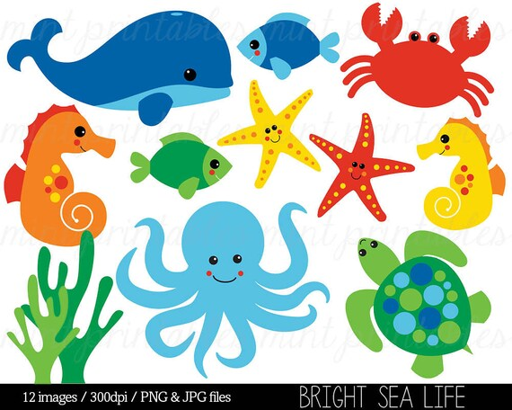 sea animal clipart under the sea baby sea creatures clip rh etsy com under the sea clipart images under the sea clip art printable free