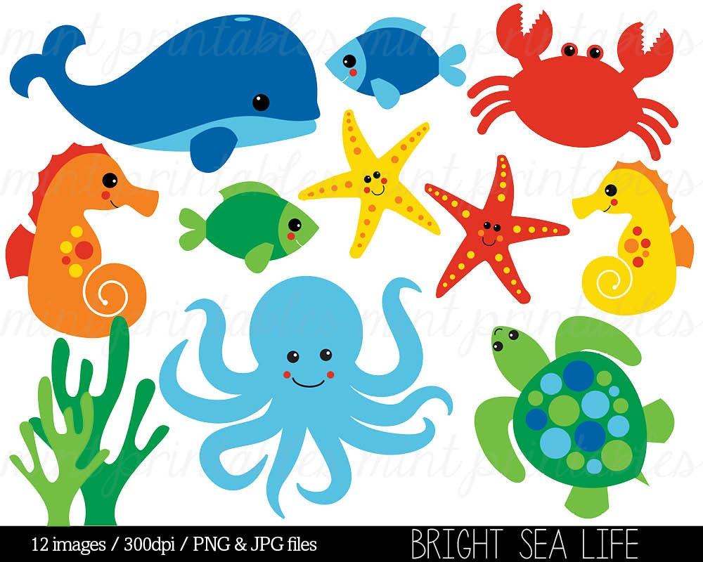 sea animal clipart under the sea baby sea creatures clip rh etsy com cartoon sea creatures clipart sea creatures clipart black and white
