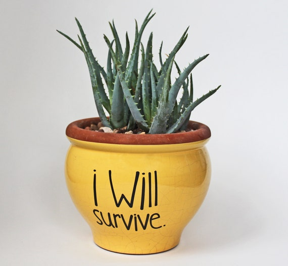 The Trick That Will Keep Your Favorite Flower Alive And: DIY Flower Pot Decal / I Will Survive / Spring Gift Idea