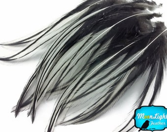 Laced Feathers, 10 Pieces - NATURAL WHITE Laced Long Rooster Cape Feathers : 2202