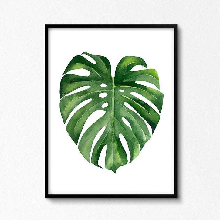 monstera leaf tropical leaves monstera poster watercolor. Black Bedroom Furniture Sets. Home Design Ideas