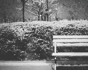 Park Snow Black and White Photography Print