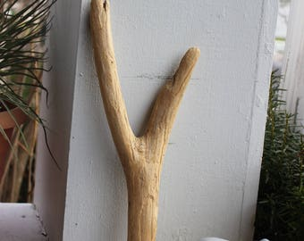 Y Driftwood Sculpture , Natural Wood Letter , Bohemian Decor and Beach Decoration , Drift Wood Art Supply