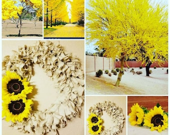Spring Time Yellow